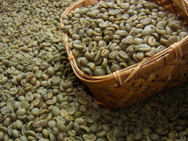 生豆コーヒーコスタリカSHB (500g) :【...の商品画像
