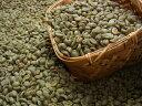 生豆コーヒーコスタリカSHB (500g) :【RCP】【HLS_DU】