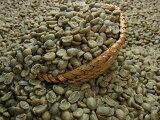 生豆コーヒーニューギニア・シグリ(1kg) コ-ヒ- 珈琲:【RCP】【HLSDU】【P25Jan15】