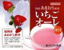 ミルク風味の粉末飲料あまおう果汁使用 NITTO いちごオーレ500g 業務用:【RCP】【HLS_DU】
