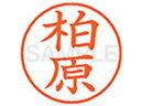 シヤチハタ/XL-9(柏原)