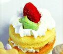 (★)イチゴのプチケーキ[10201]【犬用/ケーキ/パーティ/チーズ/クリーム/ギフト】