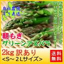 訳あり グリーンアスパラガス2kg 自社農園より直送!S〜2Lサイズ アスパラガス 北海道