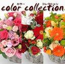 ジャスト4000円!お好きな色合いをお選び下さい♪お花屋さんにおまかせ!お祝い・お誕生日・結婚お祝・