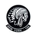 ショッピングエアフォース ミリタリー ステッカー US AIR FORCE エアフォース インディアン アメリカン 車 おしゃれ かっこいい アウトドア スーツケース バイク カーステッカー 転写 第156ニューヨーク追跡飛行隊 【メール便OK】_SC-029-MIG