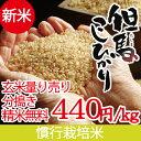 新米 平成29年産 玄米 (精米可)量り売り1kg〜 天空の...