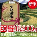 送料無料 但馬堆肥米特別栽培米 但馬村岡米(平成29年産) 玄米 1本売り! 玄米 30kg 特別栽
