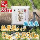 平成28年産 新米 無洗米 5kg 無農薬 無化学肥料 自然栽培 米 食べる健康!食べる貢献!生命を