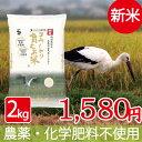 新米 無農薬 無化学肥料 自然栽培 米 食べる健康!食べる貢...