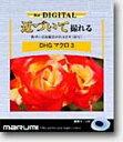 DHGマクロ3 52MM マルミ DHGマクロ3(接写)52mm [DHGマクロ352MM]【返品種別A】