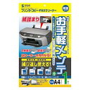 CD-13W1 サンワサプライ OAクリーニングペーパー(両面タイプ・1枚入) [CD13W1]【返品種別A】