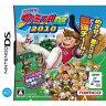 【DS】プロ野球 ファミスタDS 2010 【税込】 バンダイナムコゲームス [DSフアミスタ2010]【返品種別B】
