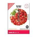 創造素材 食(55)春の旬食材(果物・野菜) イメージランド