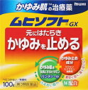 【第3類医薬品】かゆみ肌の治療薬 ムヒソフトGX 100g ...