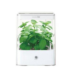 水耕栽培器 Green Farm Cube グリーンファームキューブ(ホワイト) 【税込】 ユーイング [UH-CB01G1-W]【返品種別B】【送料無料】【RCP】