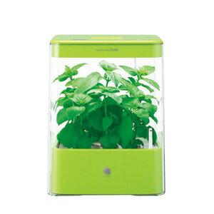水耕栽培器 Green Farm Cube グリーンファームキューブ(グリーン) 【税込】 ユーイング [UH-CB01G1-G]【返品種別B】【送料無料】【RCP】