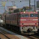 [鉄道模型]トミックス TOMIX (HO) HO-163 EF81 600形電気機関車(JR貨物更
