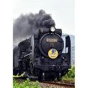 [鉄道模型]カトー(Nゲージ)2016-8D51200蒸気機関車