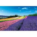 日本の風景 彩りの丘(北海道) 1000ピース エポック社
