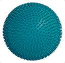 HAC-BH3100-27 ハタチ 室内ボール(ブルー) HATACHI グラウンドゴルフ用ボール