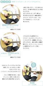 初心者セットヤマハアコースティックギター【アコギ11点入門セット】YAMAHAFS820アコギセットFS-820フォークギター