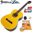 クラシックギター 初心者 セット フィエスタ by アリア FST-200 アコースティック (6点 入門 セット)