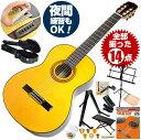 クラシックギター 初心者セット アリア A-30S 14点 ハードケース付属 (Aria スプルース単板 入門セット)