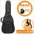 ギターケース【ドレッドノートサイズ アコースティックギター全般】リュックタイプ ARIA GBN-AG GuitarCase アリア ギターバッグ アコギケース