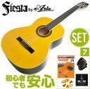 初心者セット クラシックギター 【7点 入門セット】 Fiesta by Aria FST200 フ