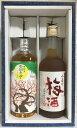 本格梅酒飲み比べセット 720ml 2本(小正の梅酒/天空の月)