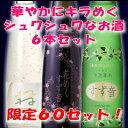 60セット限定シュワシュワ系低アルコール6本セット【白&ピンク&ゴールド】(クール便扱い)