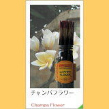 受欢迎的香味! WILD BERRY/王尔德Baily!在美国持续被喜欢的最佳香!【交货付款不可】【】<Wild Berry>-Champa Flower- insensusu[★<Wild Berry> -Champa Flower- インセンススティック チャンパフラワー(