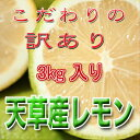 【訳あり】レモン3kg入り減農薬栽培