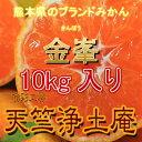 【訳あり】熊本県のブランドみかん『金峯』10kg入り[西濃運輸カンガルー便指定で全国送料¥750]もあります。