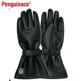 ペンギンエース/PenguinacePパターン WINTER 冬用グローブ W-4黒 LL