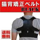 【送料無料】男女兼用 猫背矯正ベルト 美姿勢サポーター ブラック