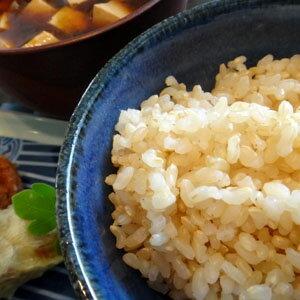 無農薬栽培 平成29年度産 有機玄米 あきたこ...の紹介画像3