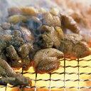 宮崎鶏 焼き鳥 もも炭火焼 約100g×10パック 《冷凍真...