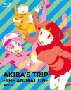 「AKIBA'S TRIP -THE ANIMATION-」Blu-rayボックス Vol.2/アニメーション