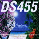 SUMMER PARADISE ~Risin'To Tha Sun~ feat.青山テルマ/DS455[CD]