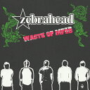 Artist Name: Z - ウェイスト・オヴ MFZB/ゼブラヘッド[CD]【返品種別A】