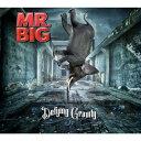 ディファイング・グラヴィティ/MR.BIG[CD]通常盤【返品種別A】