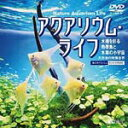 アクアリウム・ライフ 水槽を彩る熱帯魚と水草の小宇宙/BGV[DVD]【返品種別A】