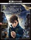 【送料無料】[限定版]【初回仕様】ファンタスティック・ビーストと魔法使いの旅<4K ULTRA HD&3D&2D ブルーレイセット>(3枚組/魔法動物カード全7種類セット/デジタルコピー付)/エディ・レッドメイン[Blu-ray]【返品種別A】