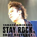 【送料無料】STAY ROCK,SOUL DISTANCE/網浜大和[DVD]【返品種別A】