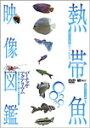 【送料無料】熱帯魚映像図鑑 バーチャル・アクアリウム 映像と音で愉しむ美しき熱帯魚の世界/教養[DVD]【返品種別A】