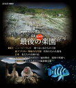 【送料無料】NHKスペシャル ホットスポット 最後の楽園 Blu-ray DISC 2/ドキュメント[Blu-ray]【返品種別A】