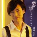 愛が信じられないなら(唄盤)/山内惠介[CD+DVD]【返品種別A】