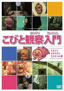 モモジリ クサマダラ モクモドキ アニメーション