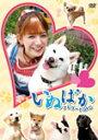 【送料無料】映画「いぬばか」ナビゲートDVD/スザンヌ[DVD]【返品種別A】